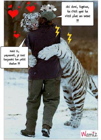 tigrou , le gros chaton lol, lolcats réalisé sur Wamiz