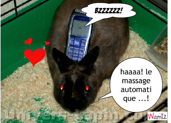 la massage, lolcats réalisé sur Wamiz