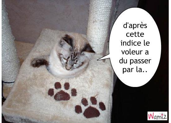 l'inpecteur chat mimi, lolcats réalisé sur Wamiz