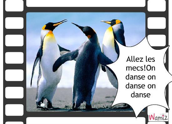 Alors on danse!!, lolcats réalisé sur Wamiz