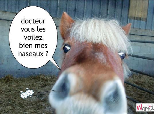 Docteur tu les voit mes naseau ?????, lolcats réalisé sur Wamiz