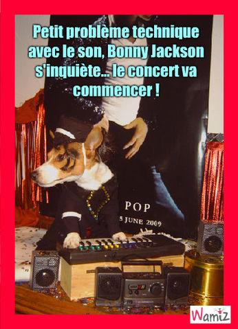 Bonny jackson en concert, lolcats réalisé sur Wamiz