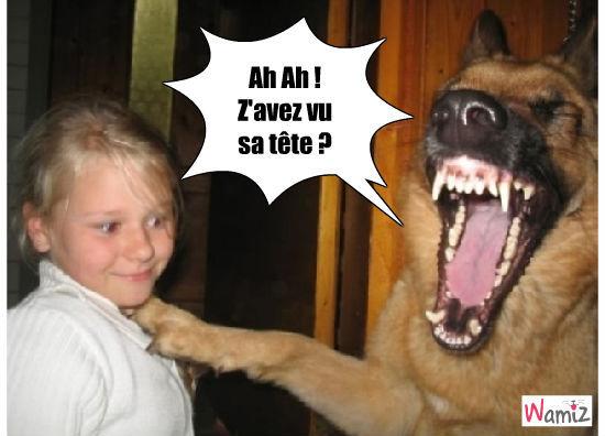chien rieur !, lolcats réalisé sur Wamiz