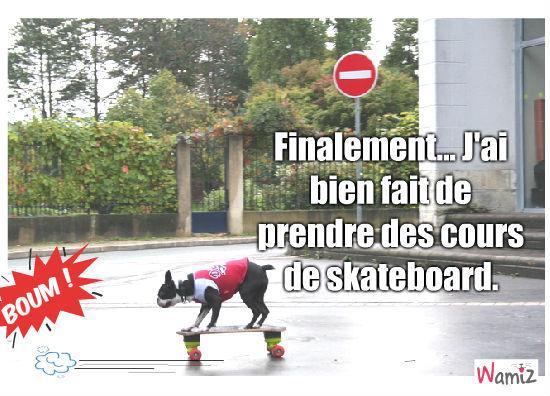 Chuete en skateboard, lolcats réalisé sur Wamiz