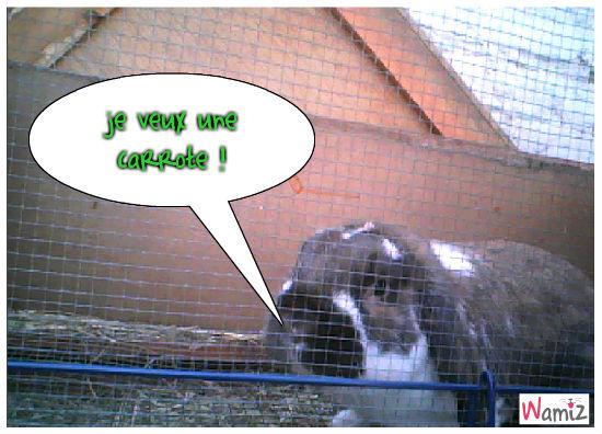 mon lapin , lolcats réalisé sur Wamiz