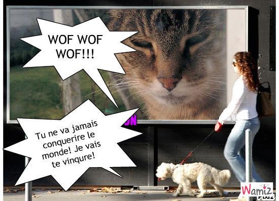 Les chien vaiqueron!, lolcats réalisé sur Wamiz