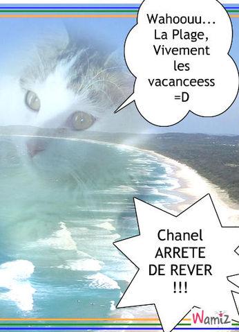 Chanel à la plage, lolcats réalisé sur Wamiz