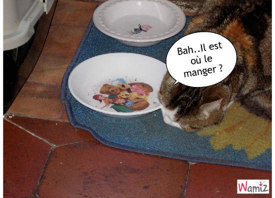le chat qui voit mal ., lolcats réalisé sur Wamiz