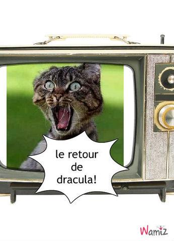 Dracula, lolcats réalisé sur Wamiz