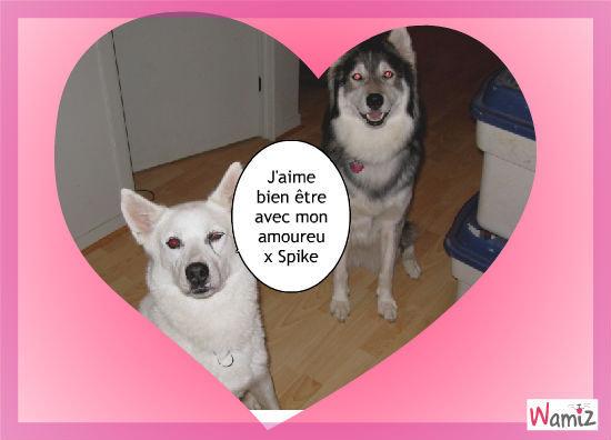 Tsuky et Spiky , lolcats réalisé sur Wamiz