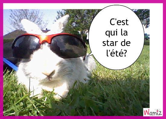 le lapin star,amusant et simple, lolcats réalisé sur Wamiz