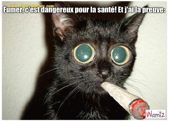 Fumer rime avec danger, lolcats réalisé sur Wamiz
