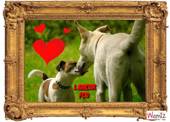 HAaaa l amour ....., lolcats réalisé sur Wamiz