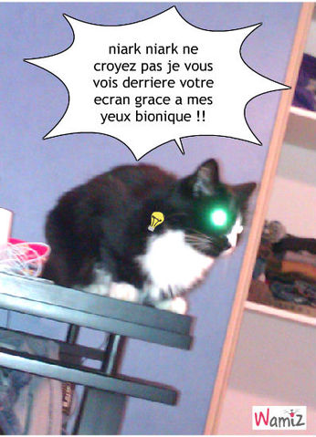 chat bionique, lolcats réalisé sur Wamiz