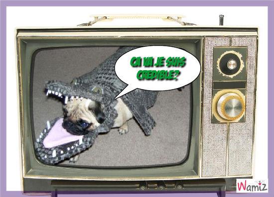 croco chien, lolcats réalisé sur Wamiz