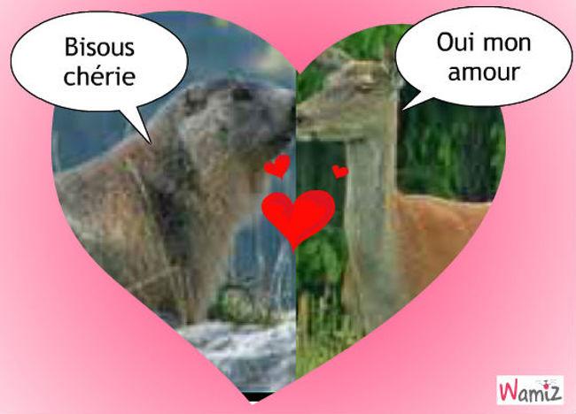 amour, lolcats réalisé sur Wamiz