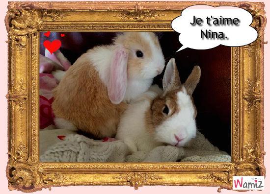 Arthur et Nina, le grand amour. , lolcats réalisé sur Wamiz