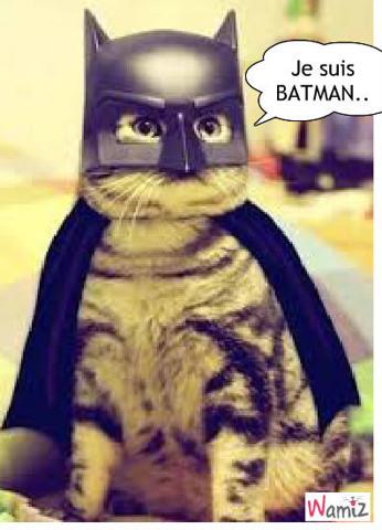 batman chat, lolcats réalisé sur Wamiz