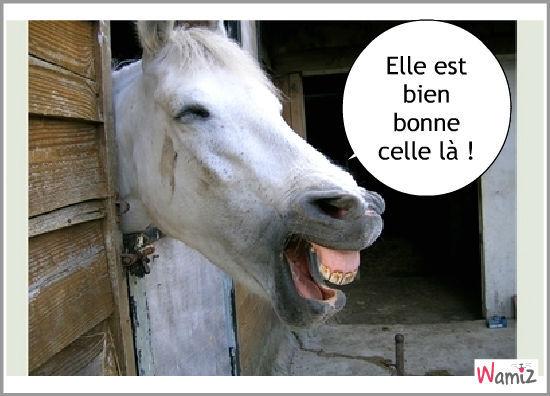 blague-cheval-55041.jpg