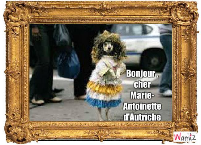 bonjour, cher Marie-Antoinette d'Autriche , lolcats réalisé sur Wamiz