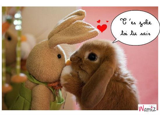bunnylove, lolcats réalisé sur Wamiz