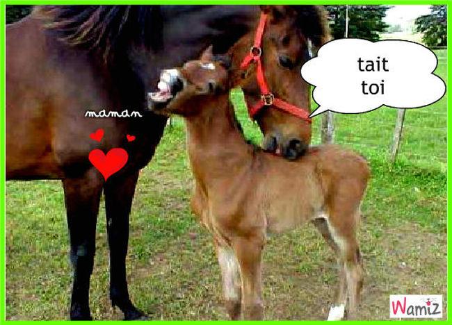 c'est dur d'être une mère, lolcats réalisé sur Wamiz
