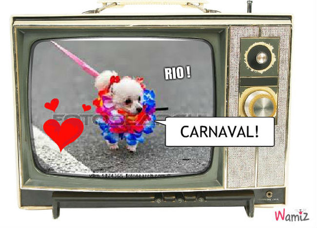 carnaval de rio ! , lolcats réalisé sur Wamiz