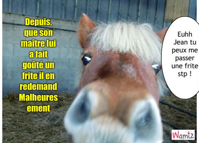 Ce pauvre cheval a aquis son grand niveau McDonald's ( frites salées), lolcats réalisé sur Wamiz
