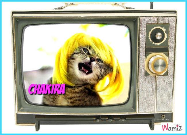 Chakira, lolcats réalisé sur Wamiz