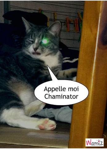 Chaminator, lolcats réalisé sur Wamiz