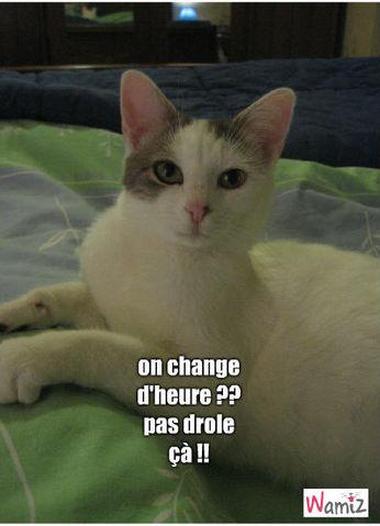 Gut bekannt changement d'heure : tooniz, bande dessinée (BD) et photo  QQ31
