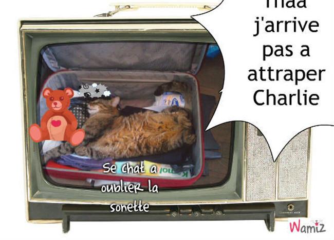 Charlie Charlie, lolcats réalisé sur Wamiz