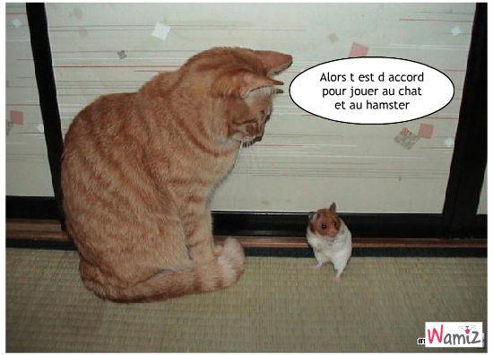 Chiens et chat peuvent s 39 aimer membres - Dessin de chat rigolo ...