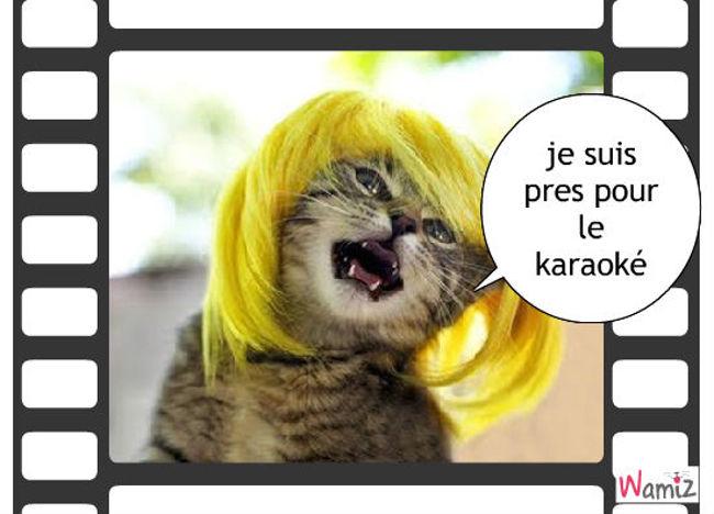 chat karaoké, lolcats réalisé sur Wamiz