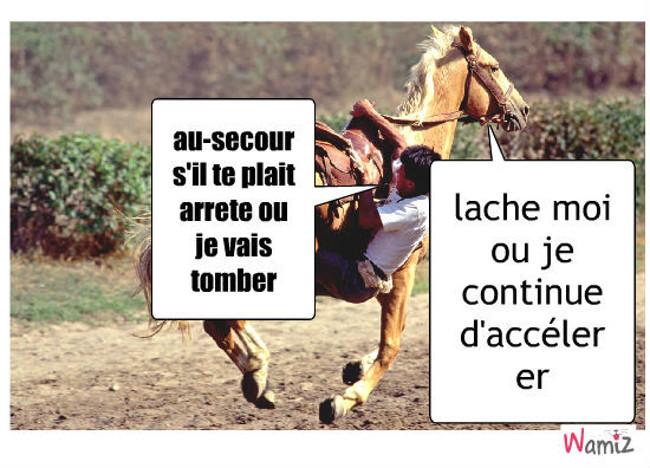 cheval et homme, lolcats réalisé sur Wamiz