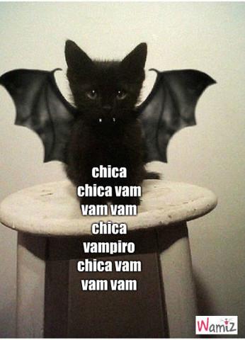 chica vampiro chat, lolcats réalisé sur Wamiz