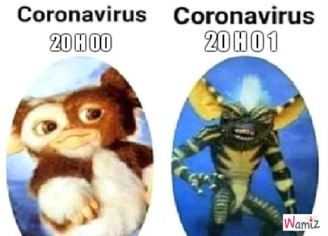 Comment agit le coronavirus ?, lolcats réalisé sur Wamiz