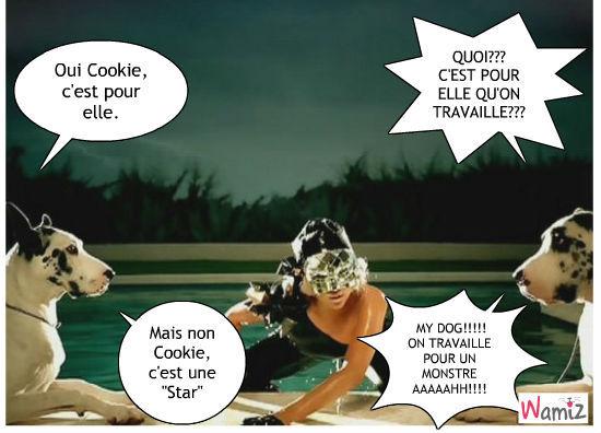 Cookie a peur de Lady Gaga, lolcats réalisé sur Wamiz