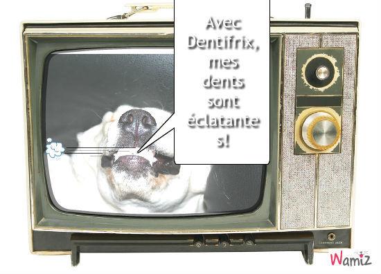 Dentifrix, lolcats réalisé sur Wamiz