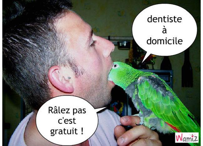 Dentiste, lolcats réalisé sur Wamiz