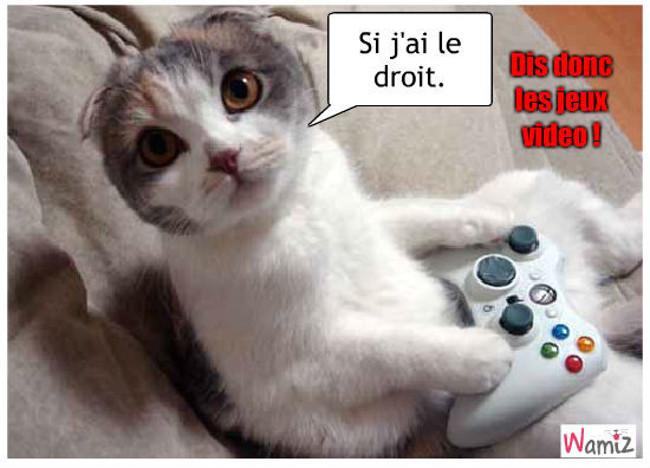 Dis donc les jeux video !!!!, lolcats réalisé sur Wamiz