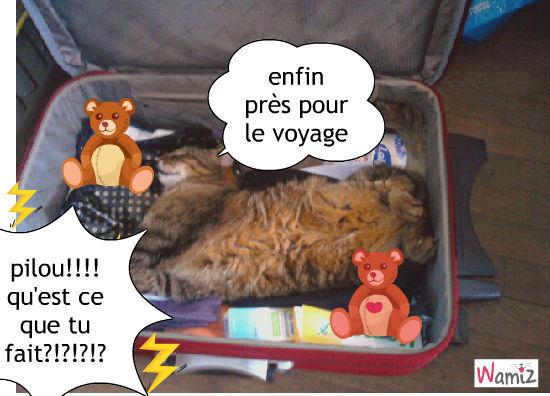 image drole voyage