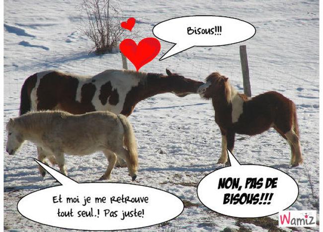 entre poneys, lolcats réalisé sur Wamiz