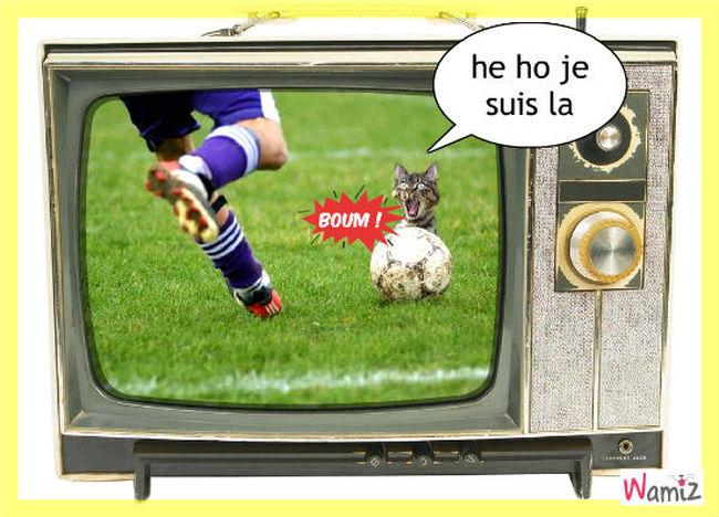 football, lolcats réalisé sur Wamiz