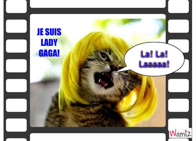 Future Lady Gaga chat!(enfin presque!), lolcats réalisé sur Wamiz