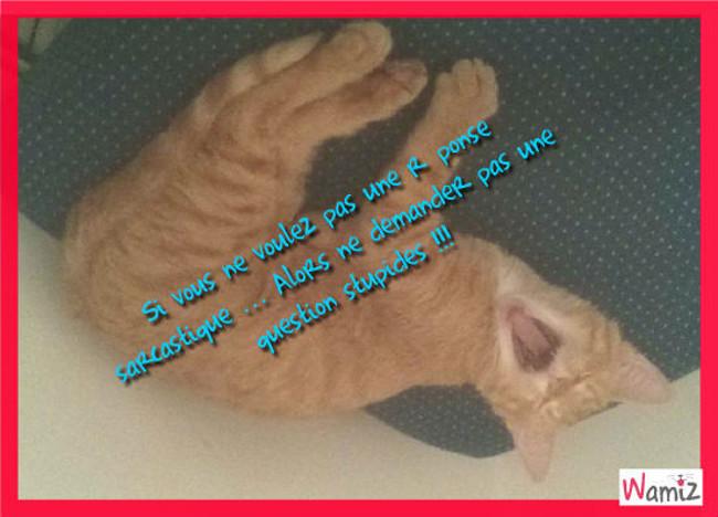 Garfield , lolcats réalisé sur Wamiz