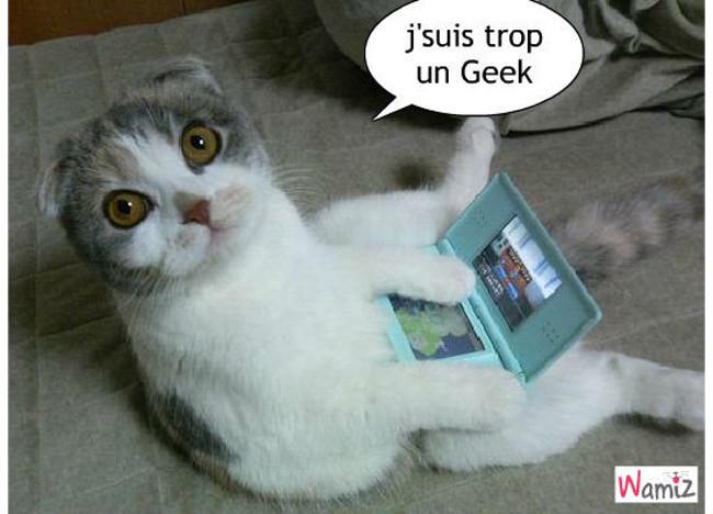 Geek, lolcats réalisé sur Wamiz