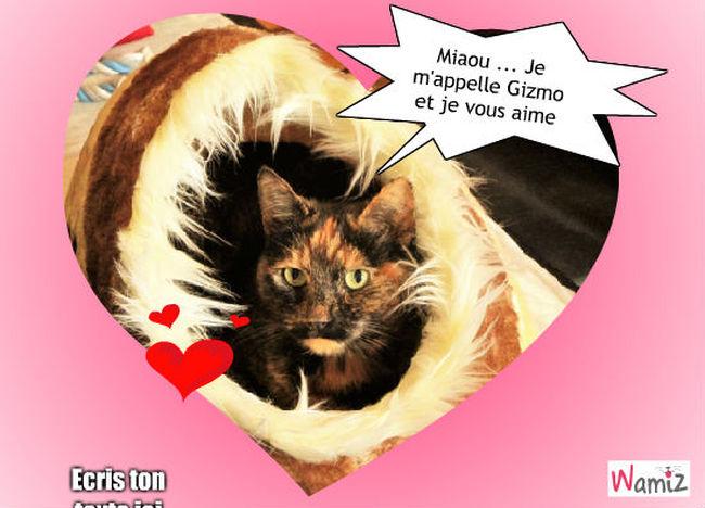 Gizmo mon amour, lolcats réalisé sur Wamiz
