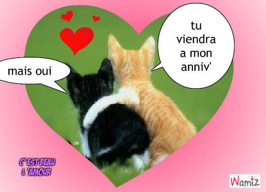 Chats mignons rigolos - Photo de chaton rigolo ...