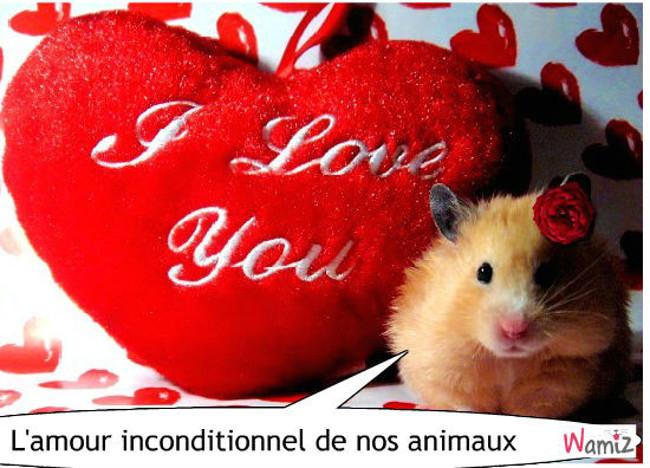 Hamster , lolcats réalisé sur Wamiz